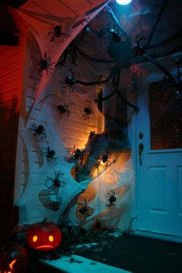 spiders-on-door
