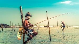 welligama_srilanka